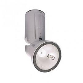 Прожектор DELUX FМІ 10 150W Rx7s сірий корпус без ПРА